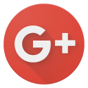Google Plus Partner